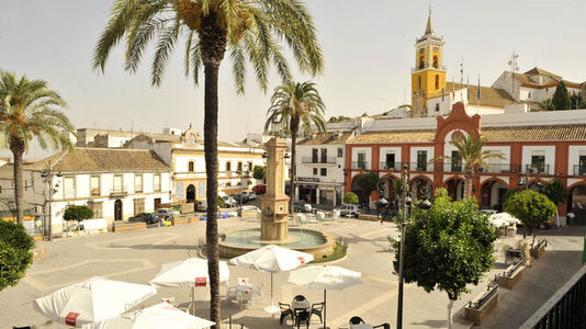 Creación de Páginas Web en Villamartín