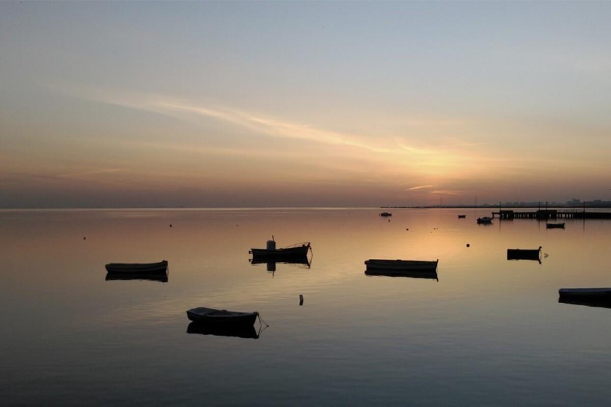 Diseño y Creación de Páginas Web en Puerto Real